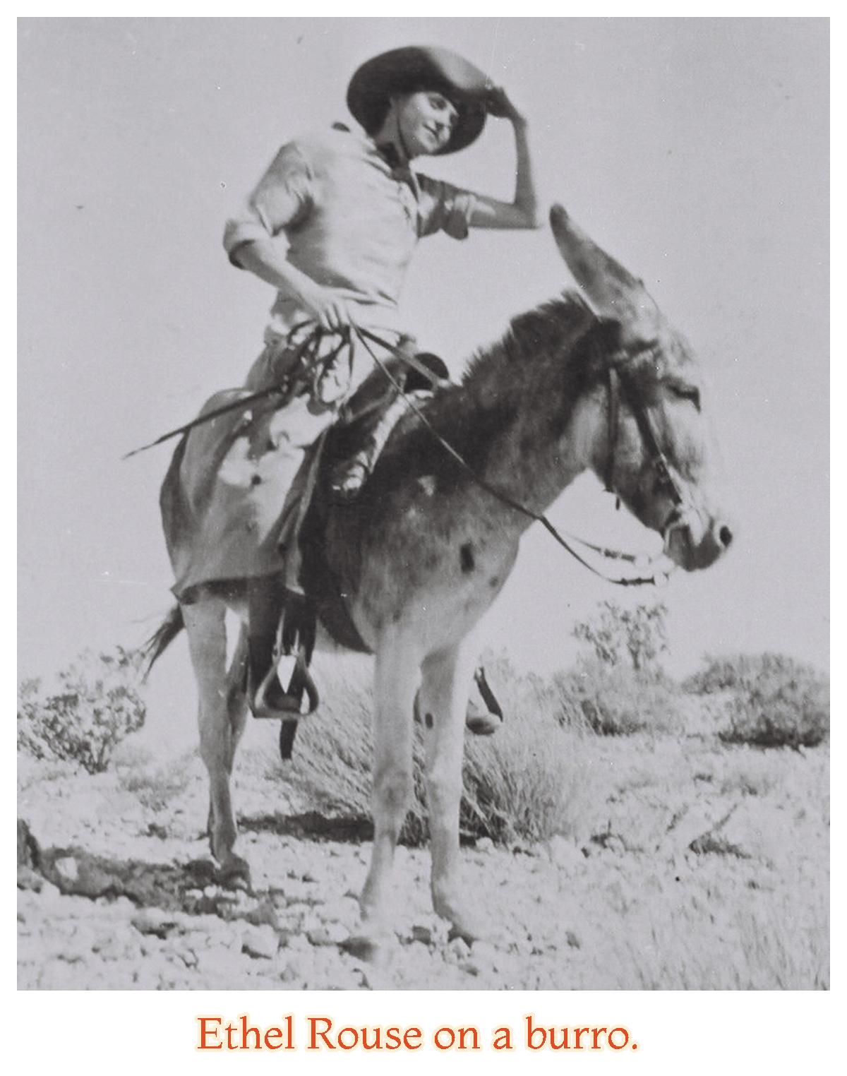 Desert Hot Springs' 'Classification'